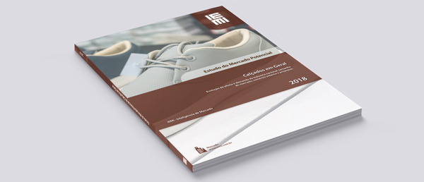 wide_Capa-book-IEMI-MP-Calçados-em-geral-2018