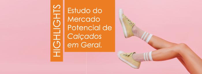 Mercado Potencial de Calçados em Geral 2021